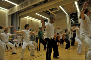 capoeira-meeting-copenhagen-2010-0220